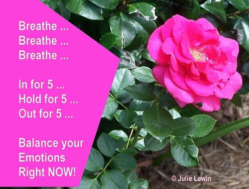 Breathe for Balance